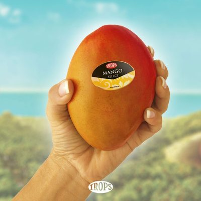 𝗗𝗶 𝗾𝘂𝗲 𝗲𝗿𝗲𝘀 𝗳𝗮𝗻 𝗱𝗲𝗹 𝗺𝗮𝗻𝗴𝗼 𝗧𝗥𝗢𝗣𝗦 𝘀𝗶𝗻 𝗱𝗲𝗰𝗶𝗿 𝗾𝘂𝗲 𝗲𝗿𝗲𝘀 𝗳𝗮𝗻 𝗱𝗲𝗹 𝗺𝗮𝗻𝗴𝗼 𝗧𝗥𝗢𝗣𝗦 🥭  #Trops #mango #mangotrops #mangos #mangostrops #mangodemálaga #soyfan #soyfandelmango #Málaga #Malaga #axarquía #axarquíamalagueña #velezMálaga #Granada #CostaTropical #alimentacionsaludable #realfood #healthyfood #instagastro #instagood